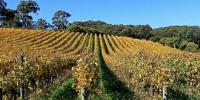 Visit Orange NSW